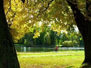 rowerem jesienią